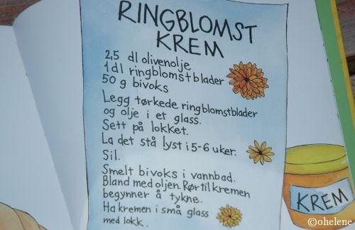 ringkrem3